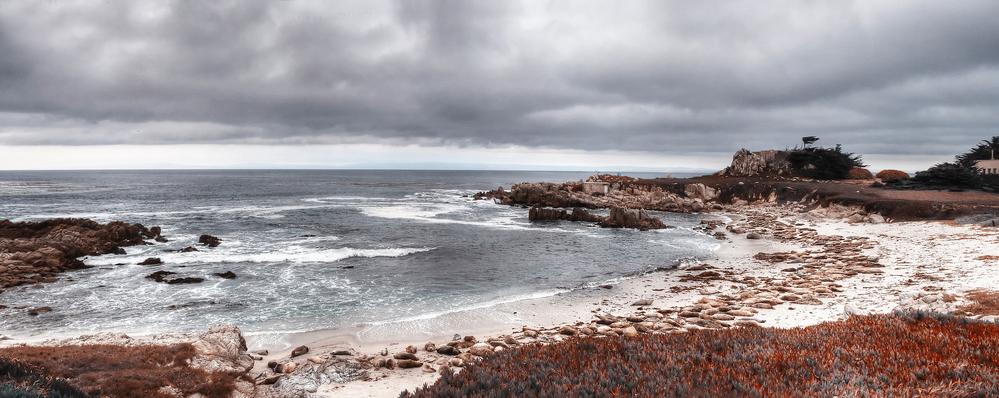 Monterey Airbnb Family