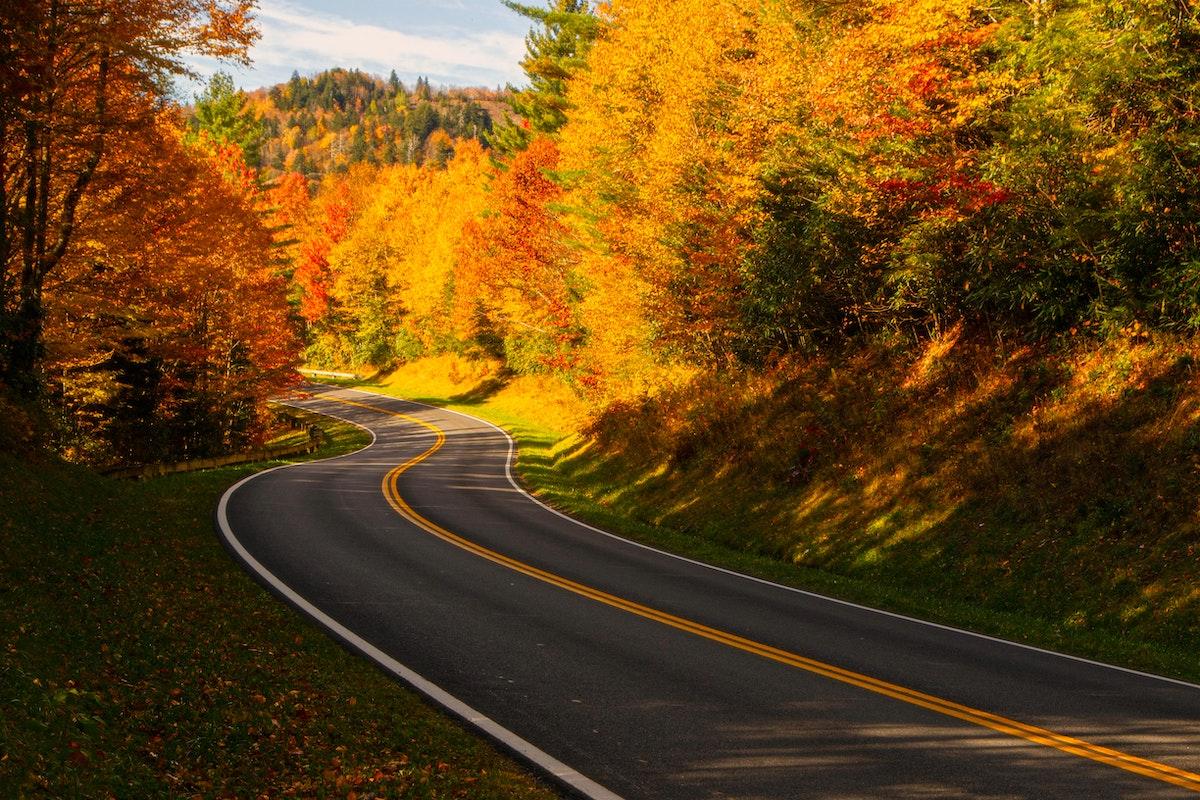Smoky Mountains Road