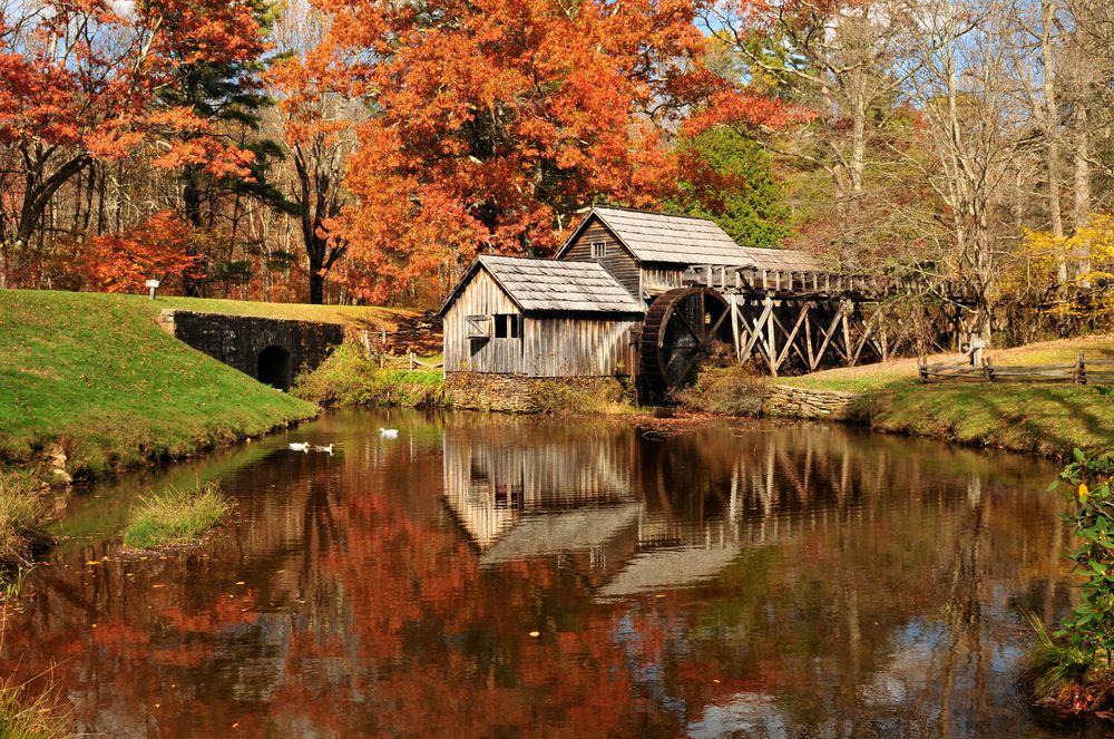 Airbnb Virginia