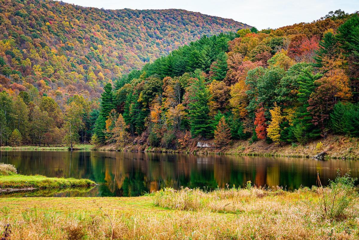Airbnbs in Pennsylvania