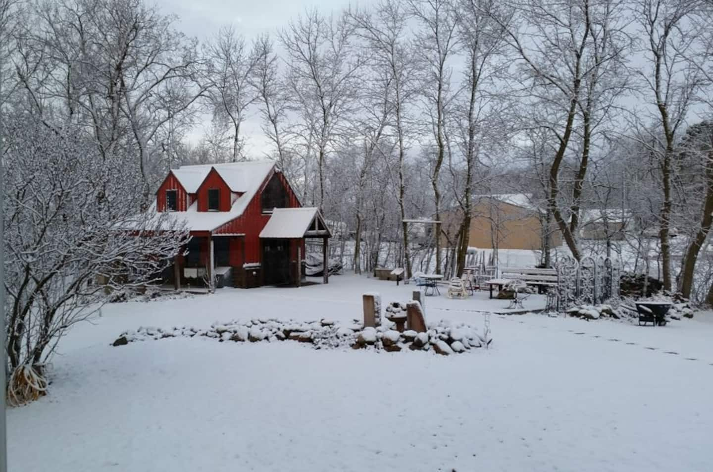 Minnesota Cabin Airbnb WinterMinnesota Cabin Airbnb Winter