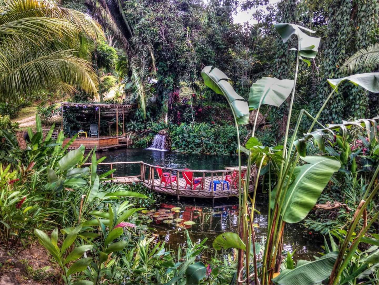 Belize Unique Airbnb