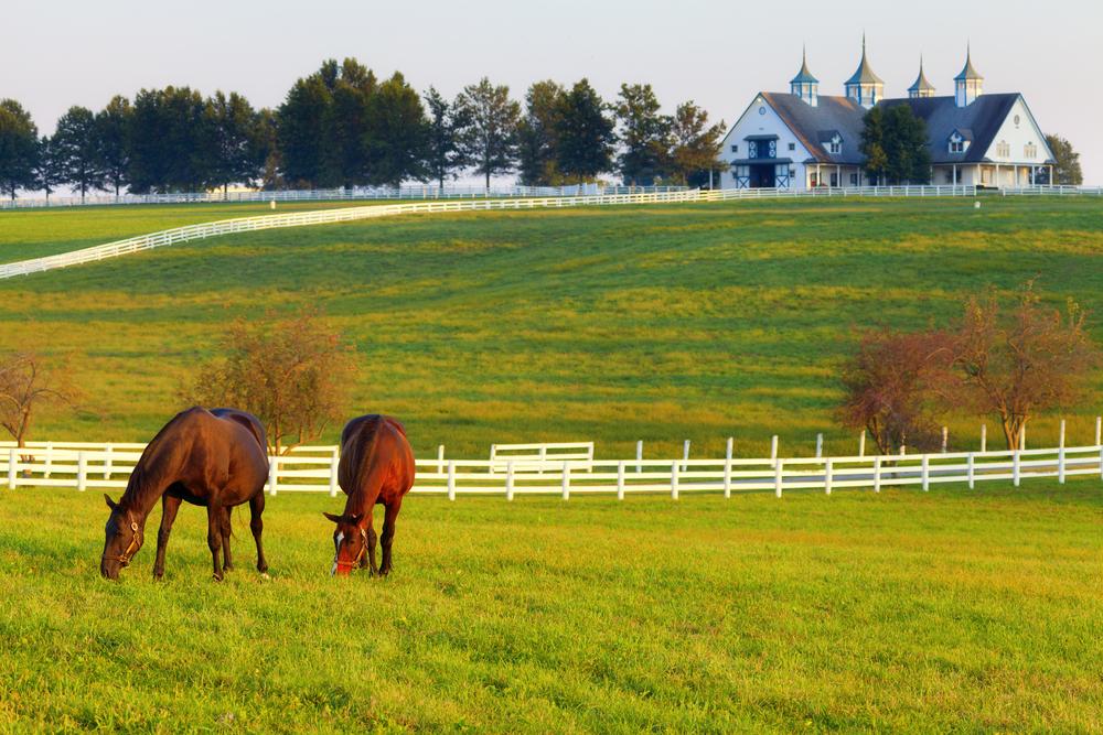 Romantic Kentucky Airbnb
