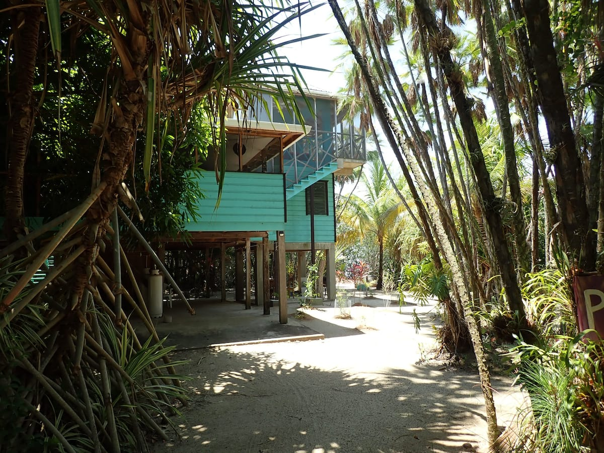 Treehouse Airbnb Belize
