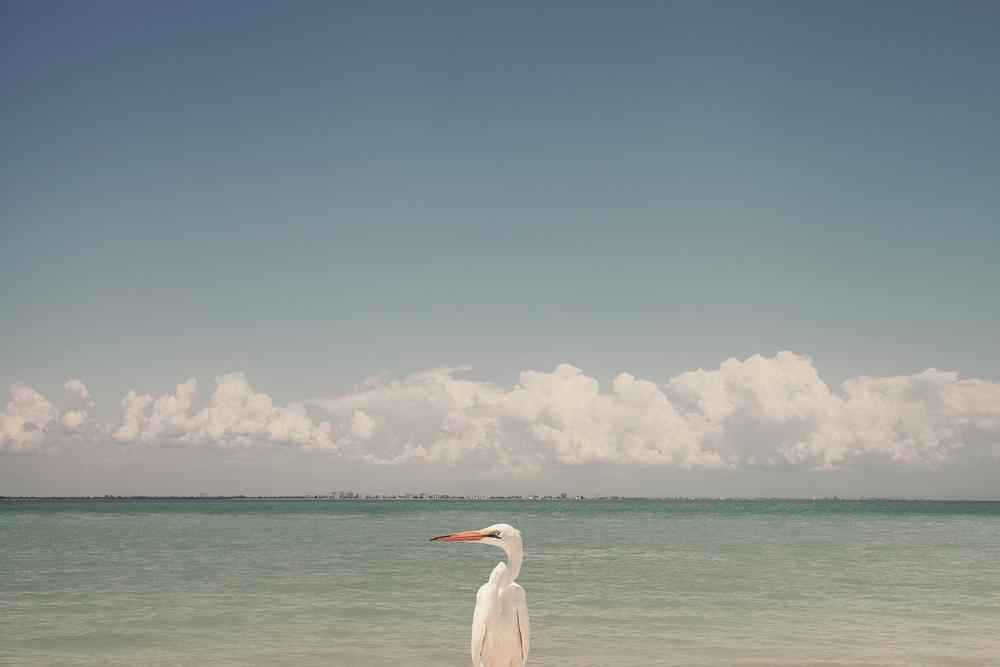 Romantic Sanibel Island Airbnb