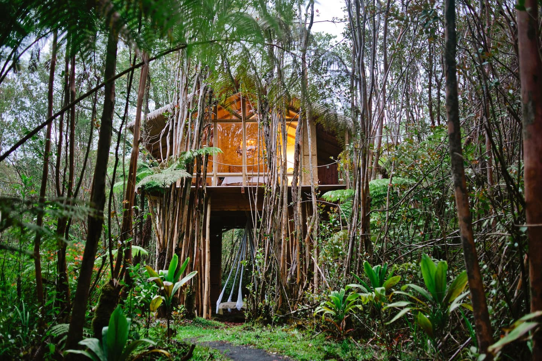 Dreamy Tropical Tree House Hawaii