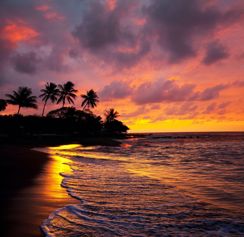 Hawaii Love Quotes