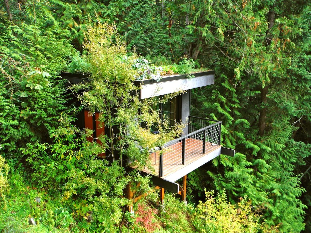 Pleasant Bay Lookout Treehouse Washington