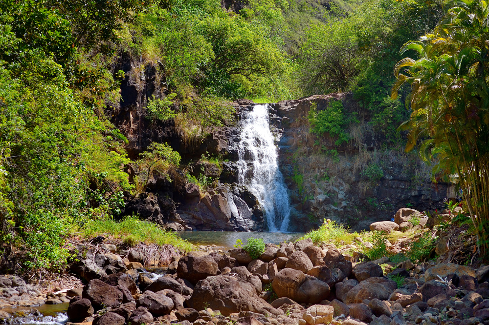 Romantic Hawaii Quotes