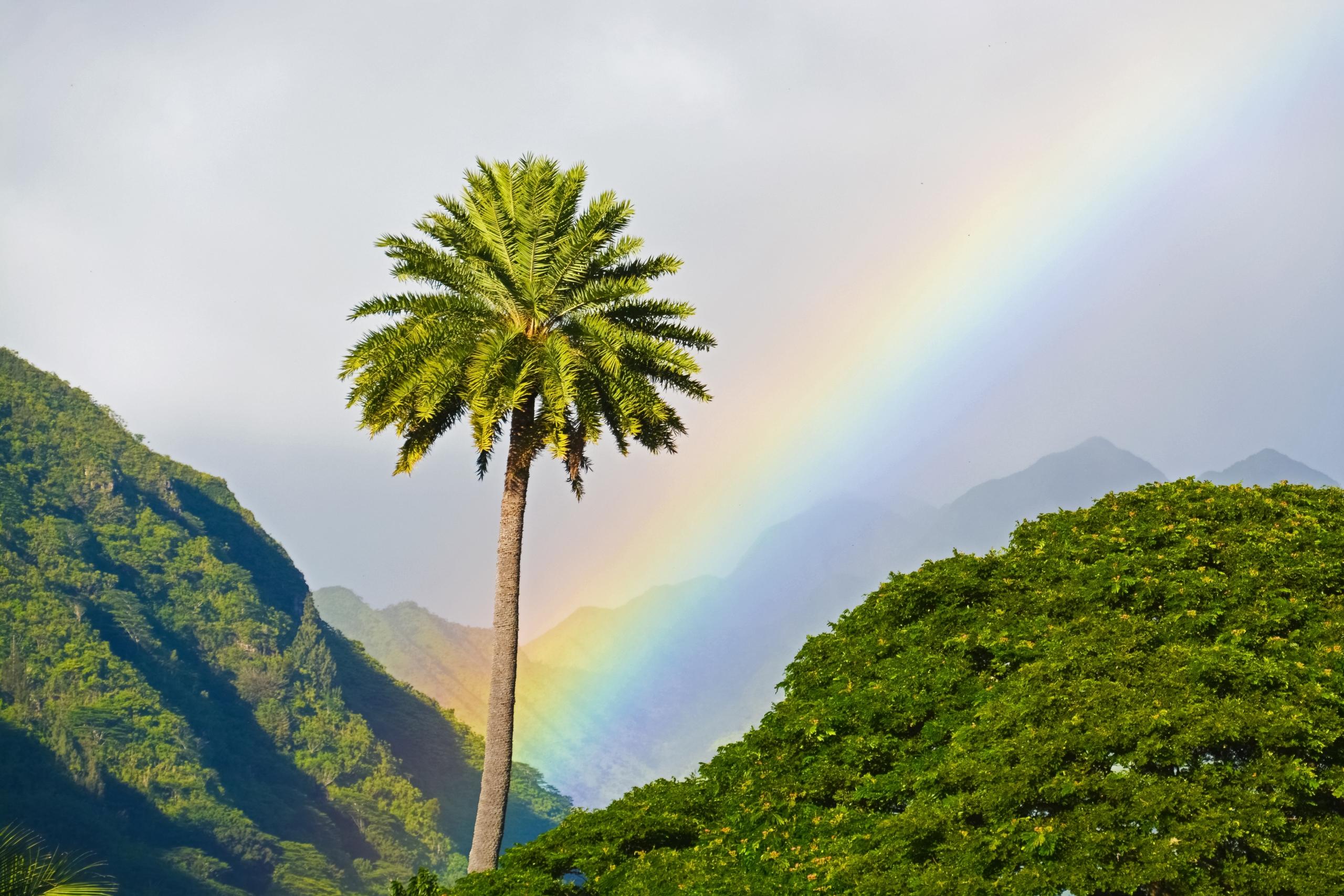 Short Rainbow Quotes