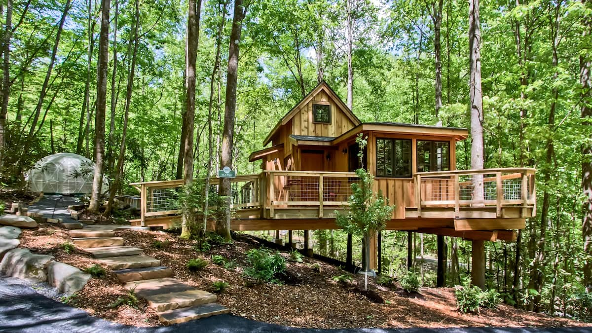 The Maple in Treehouse Grove at Norton Creek