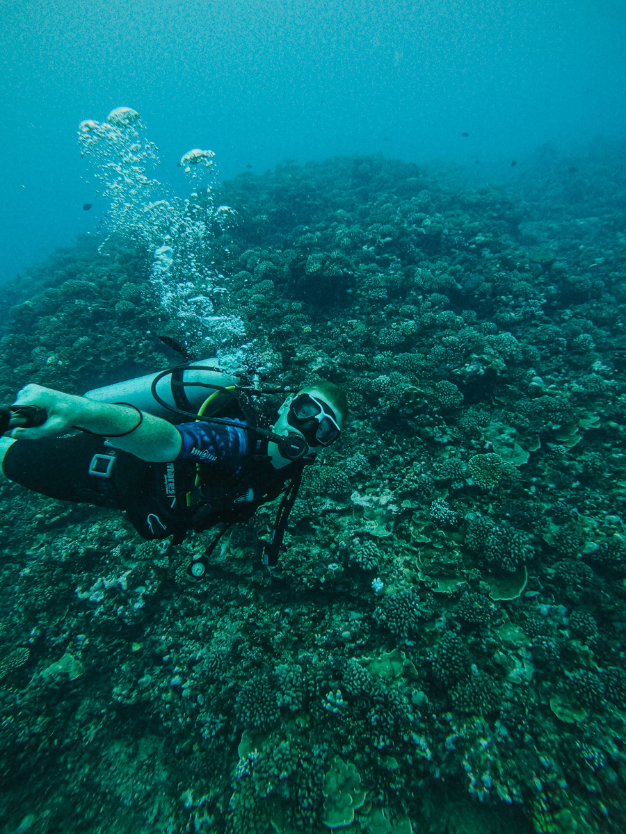 Moorea Scuba Diving